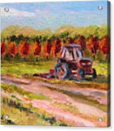 Holicong Road Farm Acrylic Print