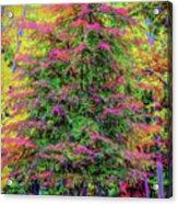 Holly Jolly Tree Acrylic Print