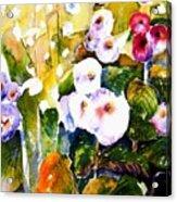 Hollyhock Garden 1 Acrylic Print