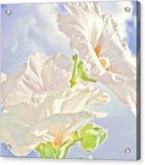 Hollyhocks And Sky Acrylic Print