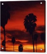 Hollywood Sunset Acrylic Print