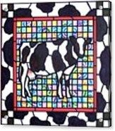 Holstein 3 Acrylic Print