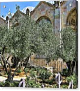 Holy Gardens Acrylic Print