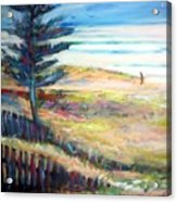 Home From The Sea Acrylic Print