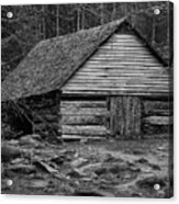 Home In The Woods Bw Acrylic Print