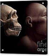 Homo Erectus With Skull Acrylic Print