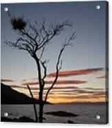 Honeymoon Bay - Tasmania Acrylic Print