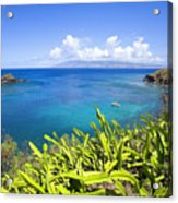 Honolua Bay Acrylic Print