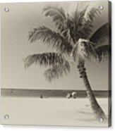 Honolulu Beach Acrylic Print