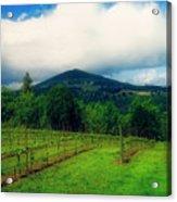 Hood River Oregon - Cloud Burst Over The Vineyard Acrylic Print