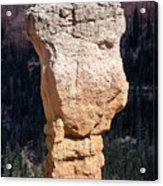 Hoodoo In Bryce Canyon Acrylic Print