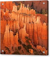 Hoodoos At Sunrise Bryce Canyon National Park Utah Acrylic Print