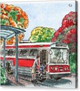 Hop On A Bus Acrylic Print