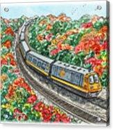 Hop On A Train Acrylic Print