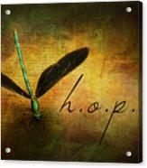 Hope Ebony Jewel Wing Damselfly On Golden Sunlight Dragonfly Acrylic Print