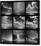 Horizons - Same Differences Acrylic Print