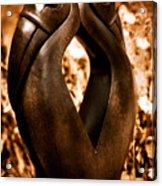 Hornbills Acrylic Print