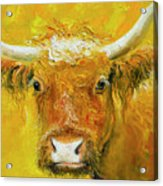 Horned Cow Painting Acrylic Print