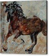 Horse 561 Acrylic Print