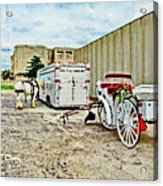 Horse And Buggie Acrylic Print