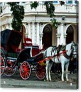 Horse And Buggy In Havana Acrylic Print