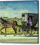 Horse And Buggy Acrylic Print