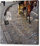 Horse And Carriage On Cobblestoned Alvarez Quintero Street In Th Acrylic Print