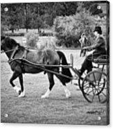 Horse And Cart Acrylic Print