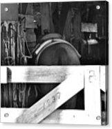 Horse And Tack Acrylic Print