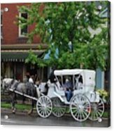 Horse And White Buggy Acrylic Print