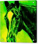 Horse Art Horse Portrait Maduro Green Black And Yellow Acrylic Print