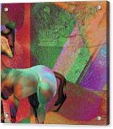 Horse Dreams Acrylic Print