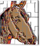 Horse Faces Of Life 4 Acrylic Print