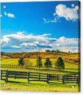 Horse Farm 6 Acrylic Print