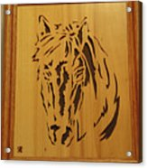 Horse Head Acrylic Print by Russell Ellingsworth