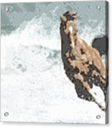 Horse In The Storm - Parallel Hatching Acrylic Print