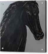 Horse Named Misty Acrylic Print