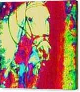 Horse Painting Jumper No Faults Psychedelic Acrylic Print