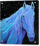 Horse-midnight Snow Acrylic Print