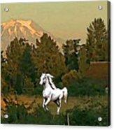 Horse Mountain And Barn Acrylic Print