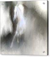 Horse No.1 Acrylic Print