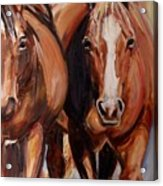 Horse Oil Painting Acrylic Print by Maria's Watercolor
