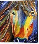 Horse One Acrylic Print