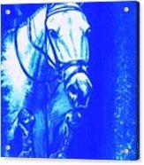 Horse Painting Jumper No Faults Aquamarine Acrylic Print
