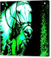 Horse Painting Jumper No Faults Black Blue And Green Acrylic Print