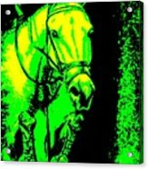 Horse Painting Jumper No Faults Green And Yellow Acrylic Print