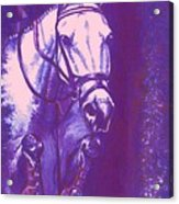 Horse Painting Jumper No Faults Lavender Acrylic Print