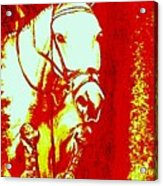 Horse Painting Jumper No Faults Red And White Acrylic Print