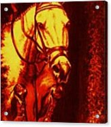 Horse Painting Jumper No Faults Reds Acrylic Print