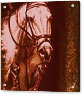 Horse Painting Jumper No Faults Soft Browns Acrylic Print